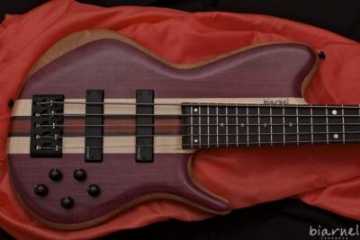 Biarnel Liuteria Akmè bass