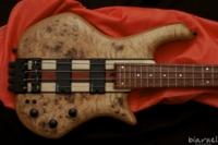 Biarnel Liuteria Scorcio bass